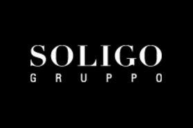 Résultats de recherche d'images pour «soligo logo»